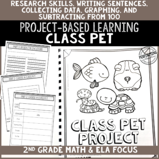 2nd grade project based learning